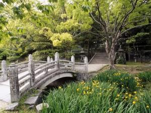 Hermoso jardín japonés