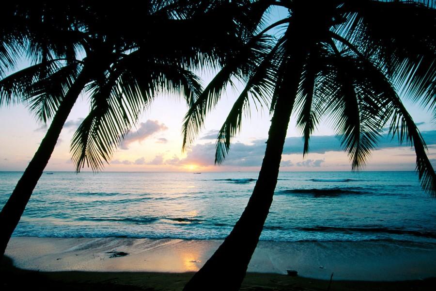 Amanecer en una bonita playa