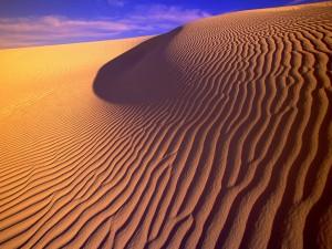 Arena del desierto