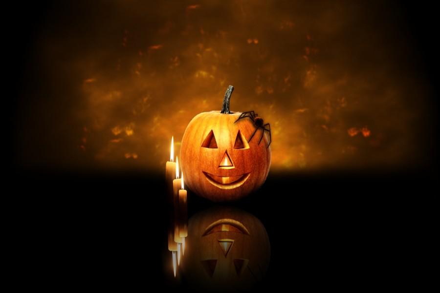 Araña sobre una calabaza de Halloween