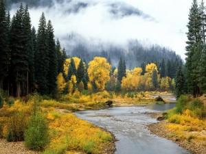 Un bonito río en otoño