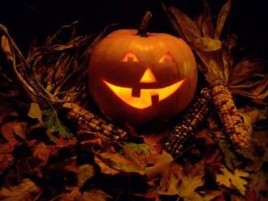 Calabaza de Halloween entre hojas y mazorcas de maíz