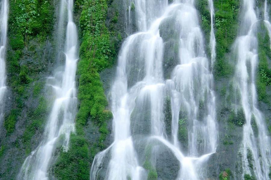 Bonitas cascadas sobre la vegetación