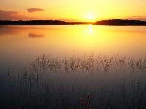Sol iluminando el lago