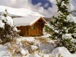 Cabaña rodeada de nieve