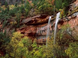 Cascada en el Parque Nacional Zion (Utah)