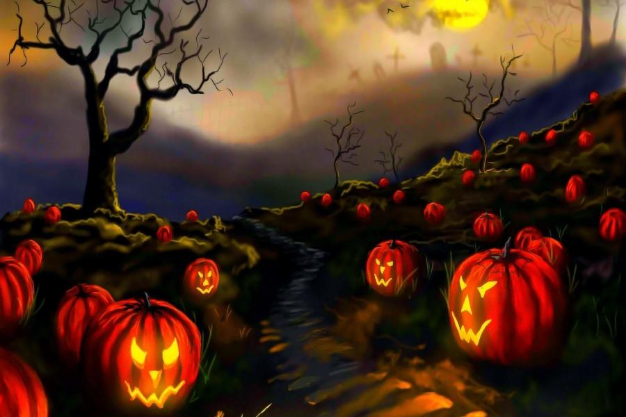 Calabazas de Halloween en el campo