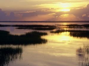 Sol reflejado en el agua