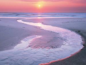 Surco de agua en una playa