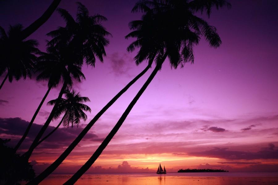 Velero navegando al amanecer