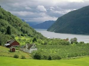 Casas junto al fiordo Sognefjord (Noruega)