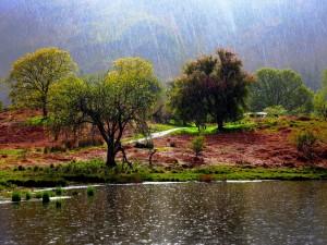 Lluvia en el río