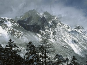 Niebla y nieve en la montaña