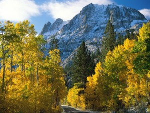 Carretera bajo la montaña
