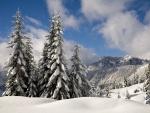Cielo despejado sobre un paisaje nevado
