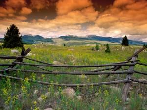Montañas vistas desde un prado