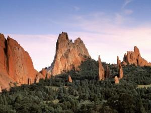 Montañas rocosas entre pinos