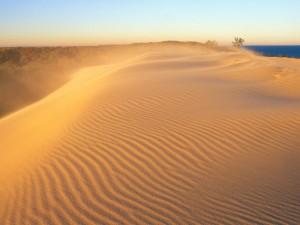 Nube de arena en las dunas