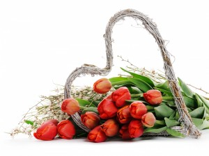 Tulipanes junto a un corazón