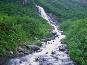 Río cayendo por la montaña