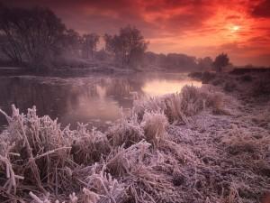 Amanecer invernal en el río
