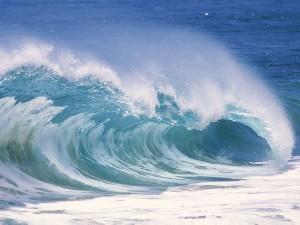 Una bonita ola