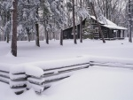 Cabaña en un bosque nevado