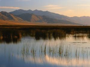 Montañas Rubí (Nevada)