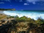 Costa rocosa en Hawái