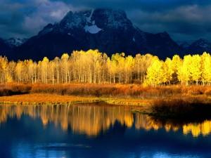 Árboles otoñales iluminados delante de una gran montaña