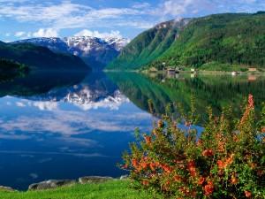 Ulvik (Fiordo de Hardanger, Noruega)