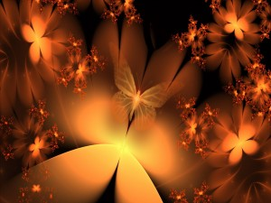 Flores y mariposas naranjas