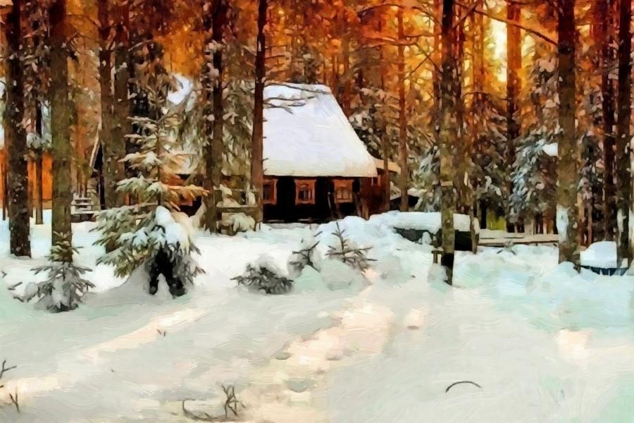 Atardecer de invierno en el bosque