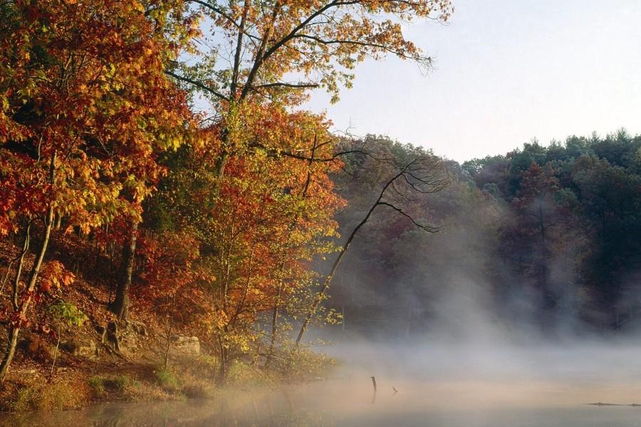 Niebla sobre el río