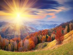 Los rayos del sol iluminan las colinas otoñales