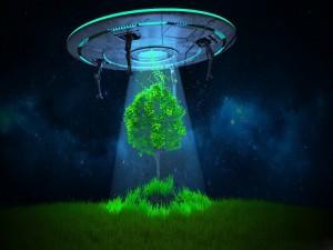 Platillo volador flotando por encima de un árbol