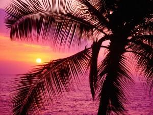 Sol brillando sobre el mar