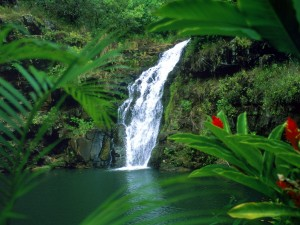 Cascada en Oahu (Hawái)