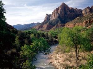 Río Virgen (Parque Nacional Zion, Utah)
