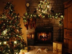 Gato durmiendo junto a la chimenea en la noche de Navidad