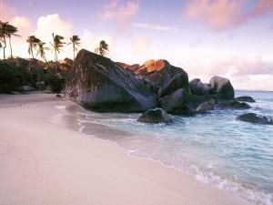Grandes rocas y palmeras en una playa