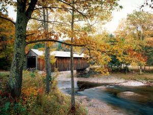 Puente cubierto sobre un río