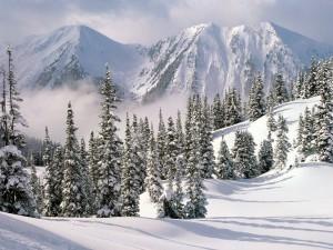 Un hermoso paisaje nevado bajo las montañas