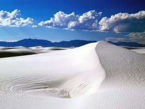 Desierto de arena blanca