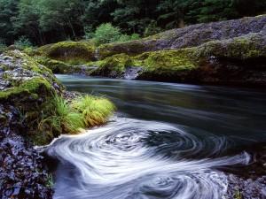 Remolino en el río