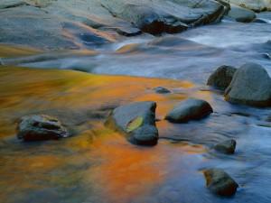 Piedras húmedas en el cauce del río