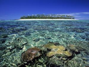 Una bonita isla
