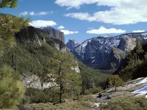 Vista del Parque Nacional de Yosemite