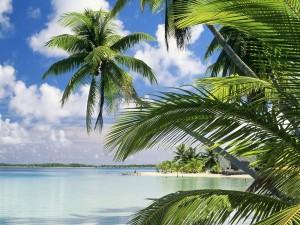 Playa en la isla Takapoto (Polinesia Francesa)