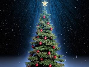 Árbol de Navidad adornado con bolas rojas